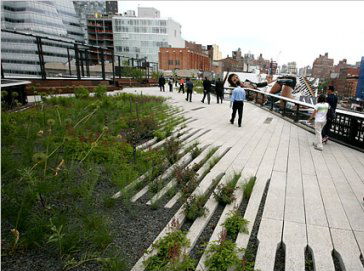 The High Line in New York after the renovation