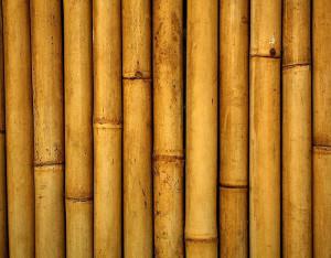 bamboo-dry