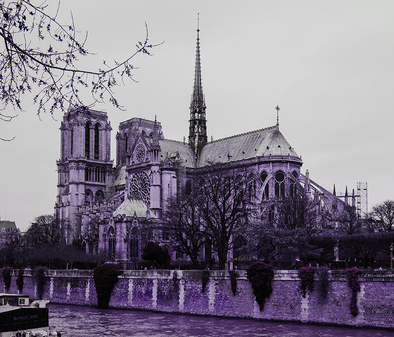 Notre Dame Cathedral Photo by bennett tobias on Unsplash